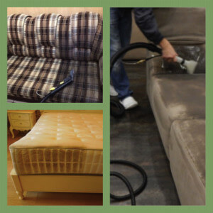 химчистка дивана в Колпинском районе